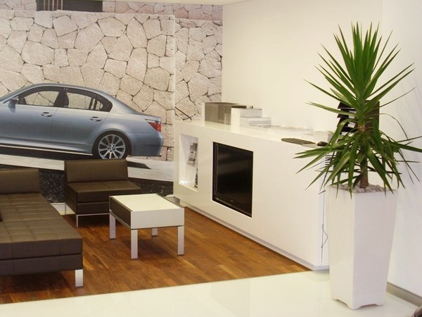 Foyer Planters : Foyer showroom planters perfection plant hire